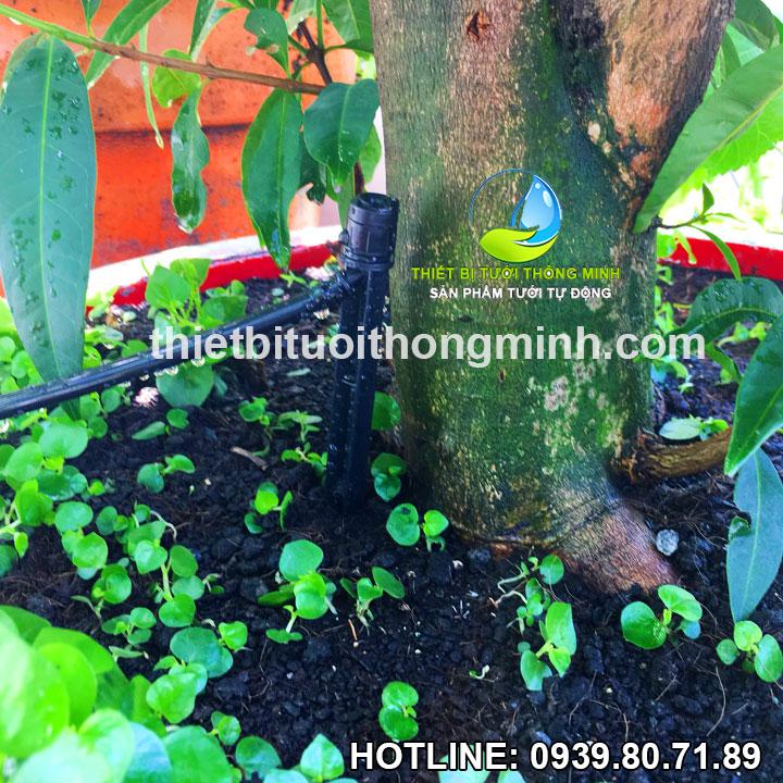Cây cắm gốc nhỏ giọt điều chỉnh được Florain