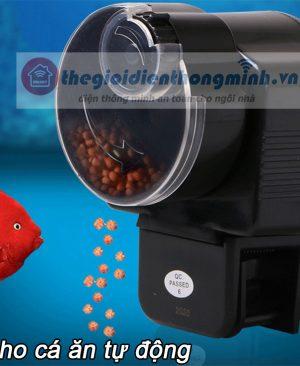 Máy cho cá cảnh ăn tự động